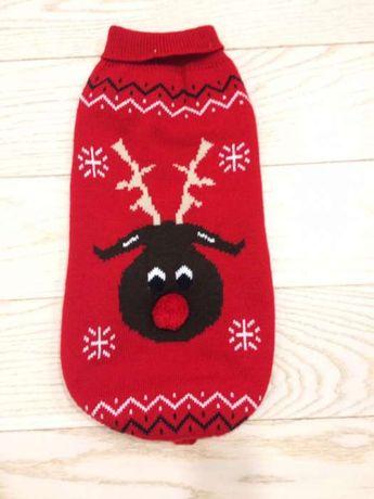 Sweter świąteczny z reniferem dla średniego pieska.