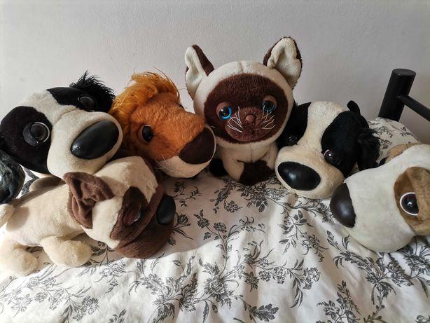 Rodzina psiaków do Adopcji + kotek gratis!!! Maskotki - dużo GROSZE !!