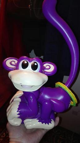 Małpka interaktywne