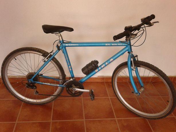 Bicicleta Sirla Big Mount GT