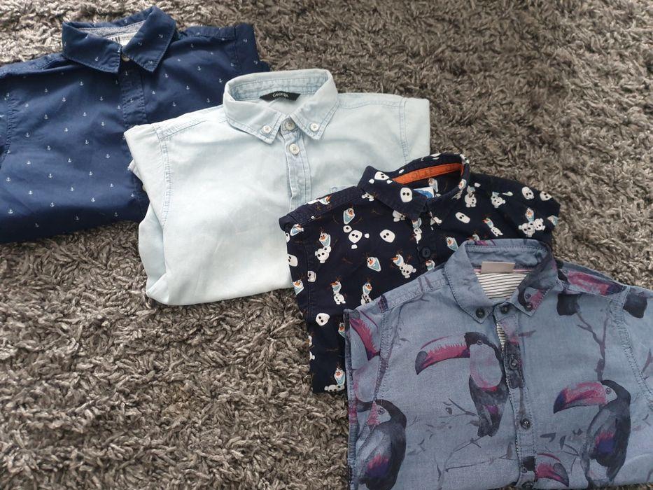 Koszule chłopięce krótki rękaw 104-110 H&M Iława - image 1