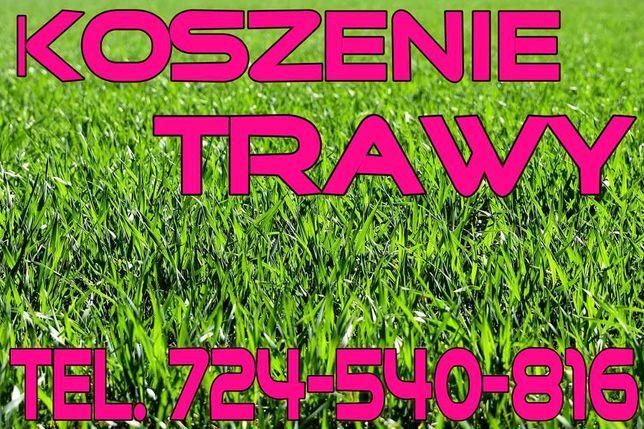 Pielęgnacja ogrodów, koszenie traw, zakładanie trawników