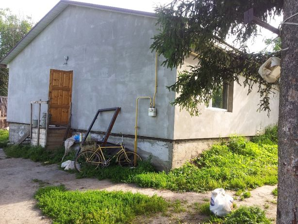 Будинок в селі 100 км від Києва