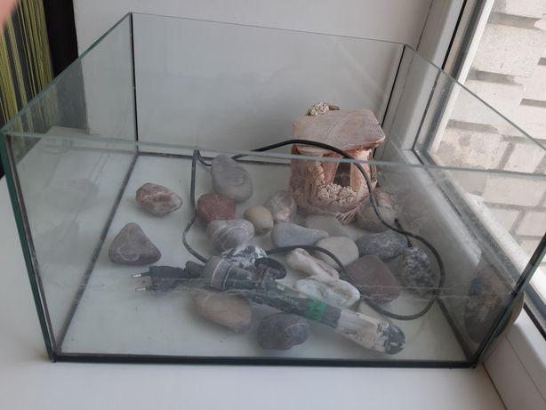 Тераріум акваріум