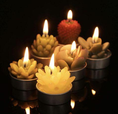 Мини свечи в форме кактусов