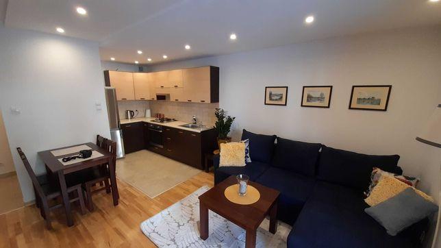 Apartament noclegi