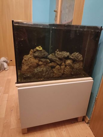 Sprzedam akwarium morskie