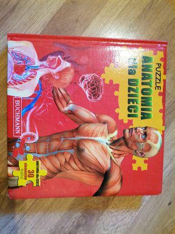 Puzzle anatomia dla dzieci