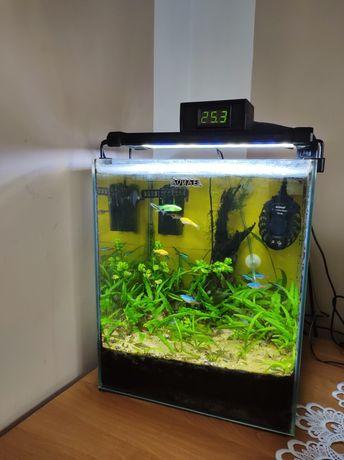 Akwarium 30 litrowe