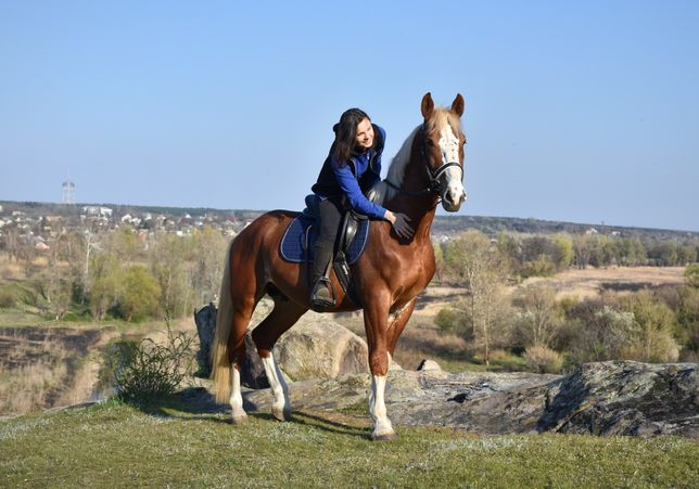 Верховая езда, конные прогулки, лошади, пони, конный спорт