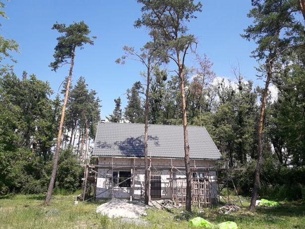 Дом в лесу Гатное. Вся инфраструктура.