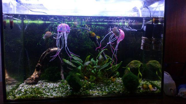 Продам аквариум со всем необходимым