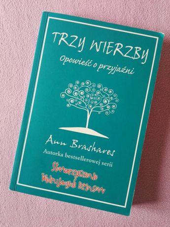 Ann Brashares trzy wierzby opowieść o przyjaźni
