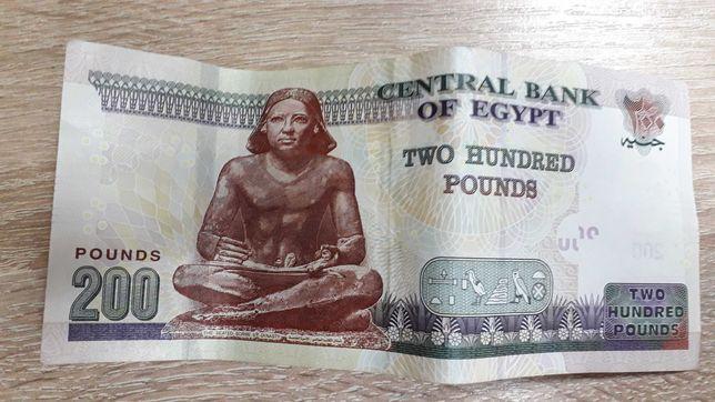 1900 египетских фунтов обменивают на 3000 гривень