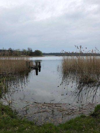 Działka nad jeziorem z linią brzegową Chełmżyca
