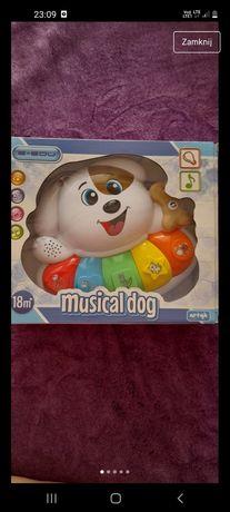 Zabawka musical dog