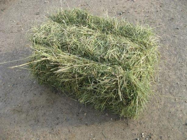 Продам сено в тюках (разнотравье)