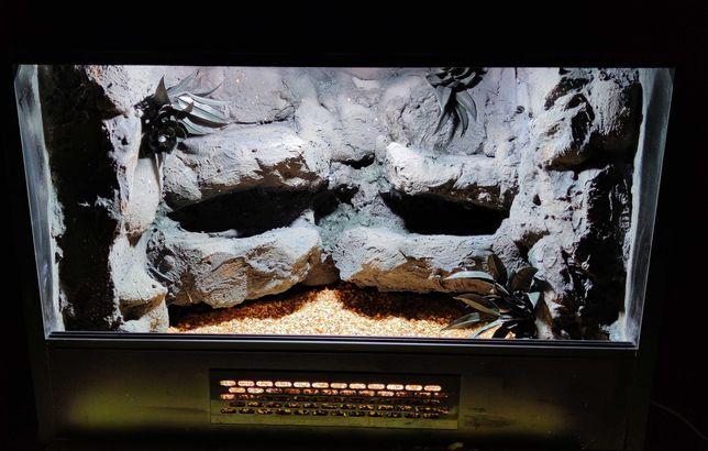 Terrarium 80x40x40 60x40x40 dla gekona agamy żółwia pytona