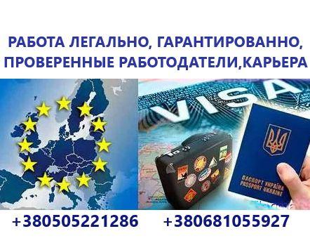 Приглашение Работа Страховка Виза Заполнение Анкет подача Новой Почтой