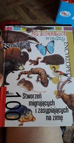 Encyklopedia Nowa