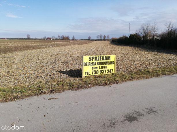 Działka rolno budowlana.