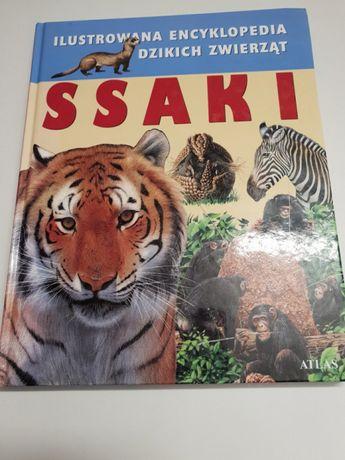 Ssaki Ilustrowana encyklopedia dzikich zwierząt