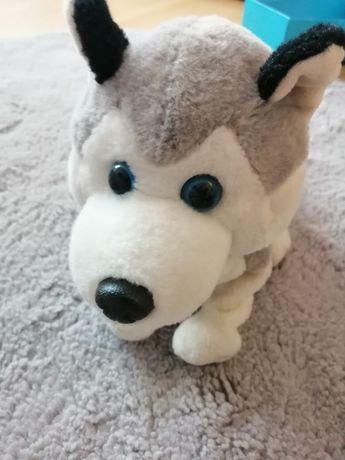 Piesek FIGO Interaktywny