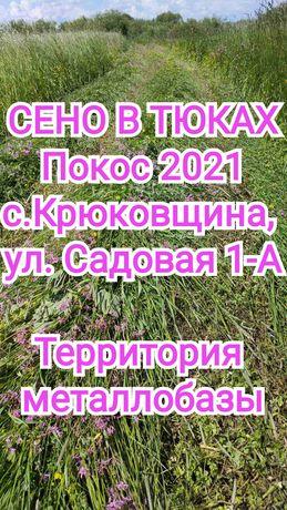 Сено в тюках Сіно Крюковщина. Покос 2021