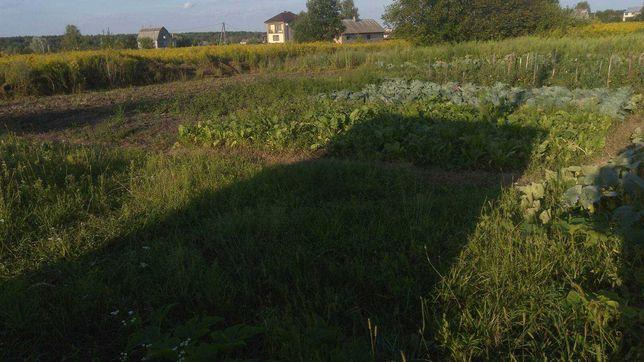 Продам земельну ділянку на Пліщинському масиві