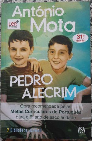 Livro - Pedro Alecrim de António Mota