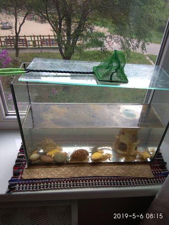 Аквариум с лягушками и тритонами