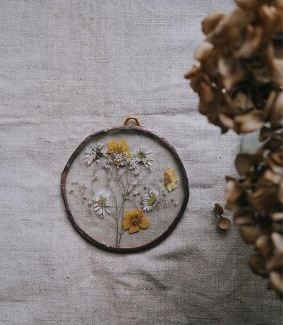 Декор на стінку. Засушені квіти під склом