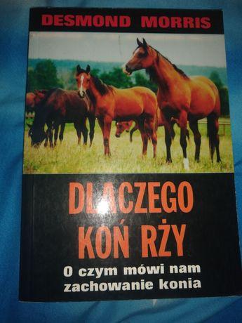 Dlaczego koń rży