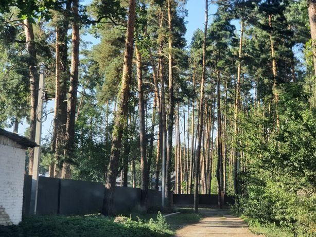 Продам участок 16 соток Малиновского