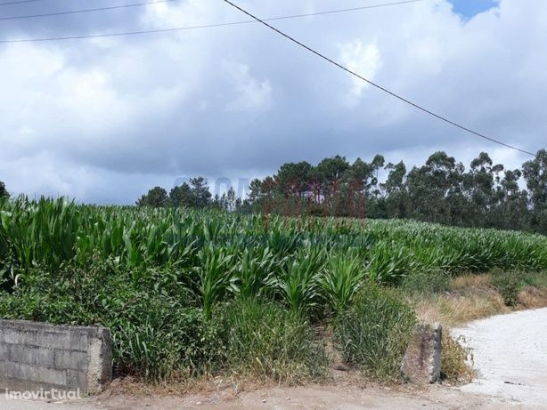 Terreno em Vilarinho das Cambas – Vila Nova de Famalicão