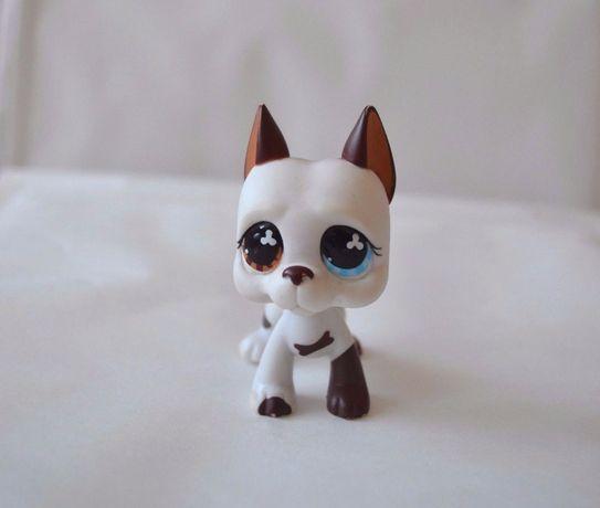Littlest Pet Shop Lps Figurka Piesek Buldog Dog Niemiecki UNIKAT