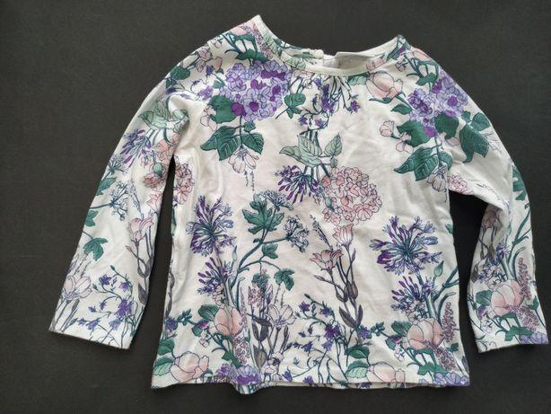 Next poszukiwana bluzka fiolety Kwiaty łąka 86cm