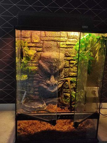 Террариум Exo Terra стеклянный «Tiki» 45 х 45 х 61 см Германия