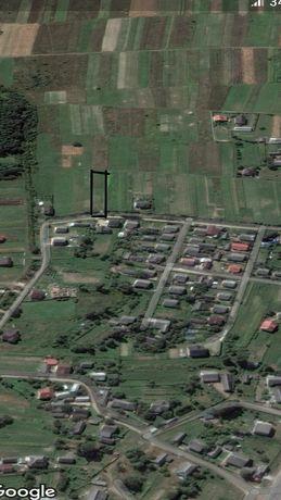 Земля в с. Березівка 10км до Іф-Франківська