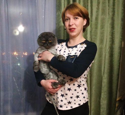 Уборка квартир. Киев, все районы