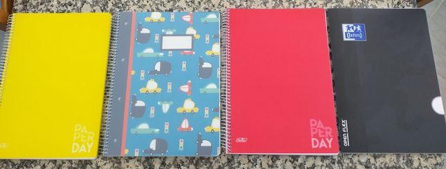 Cadernos escolares