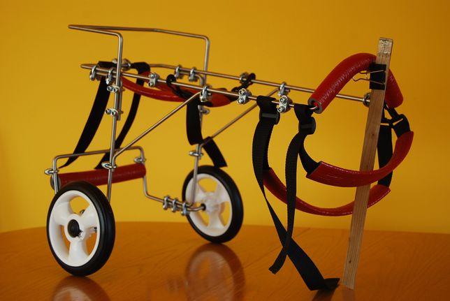 Wózek dla średniego psa, rehabilitacyjny