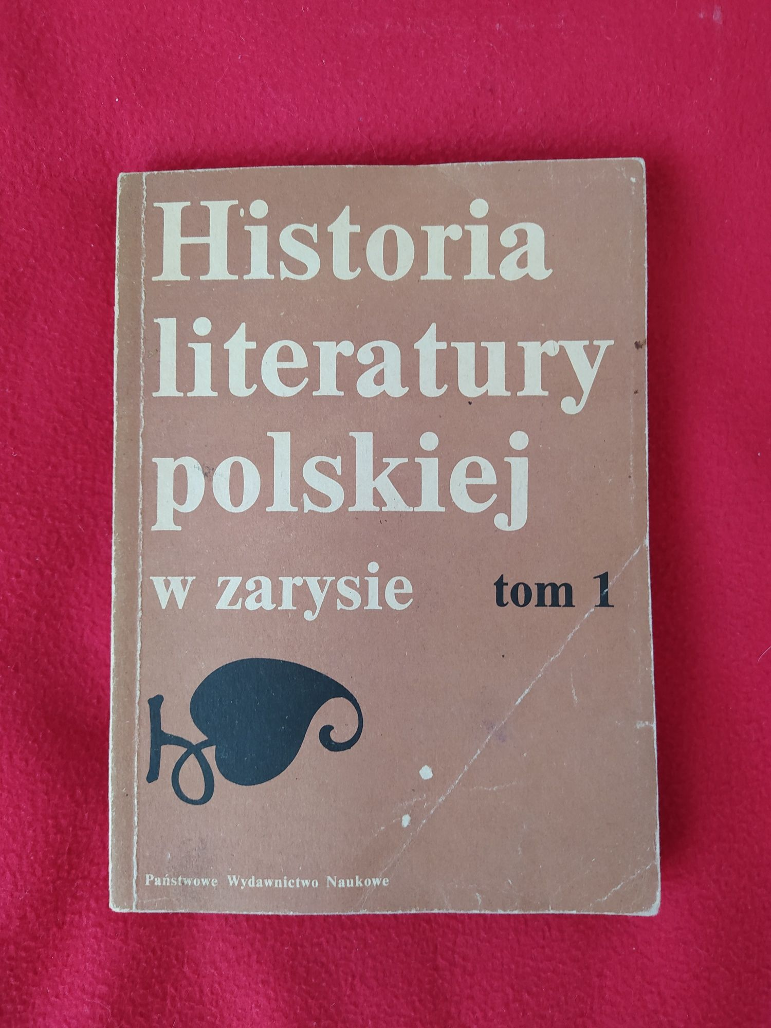 """""""Historia literatury polskiej w zarysie"""" tom 1"""