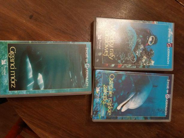 Kasety VHS z filmami przyrodniczymi.