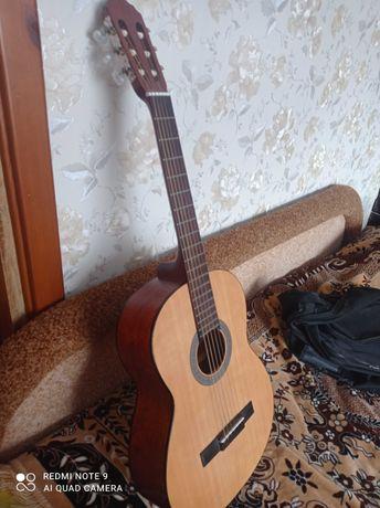 6стура акуститична гітара cort Ac100