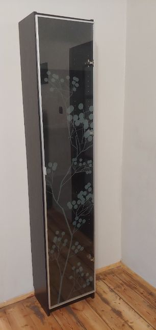Regał witryna szklane drzwi z motywem