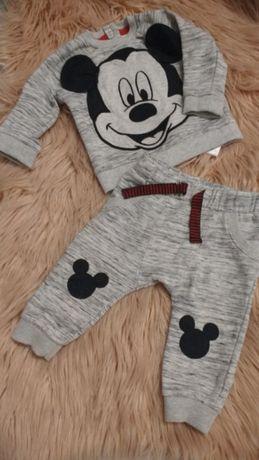 Dresy myszka Disney 68 bluza dres