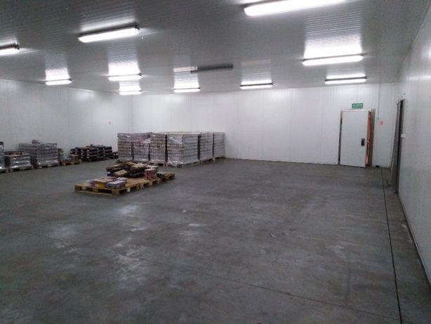 325 m2 na wynajem, magazyn chłodnia (84 m2 - pomieszczenia biurowe)