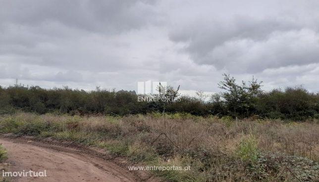 Venda Terreno com área de 10 800m2, Torrados, Felgueiras