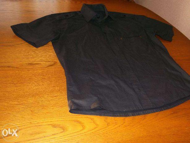 Bluzki, koszule, podkoszulki